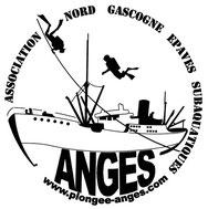 LOGO ANGES