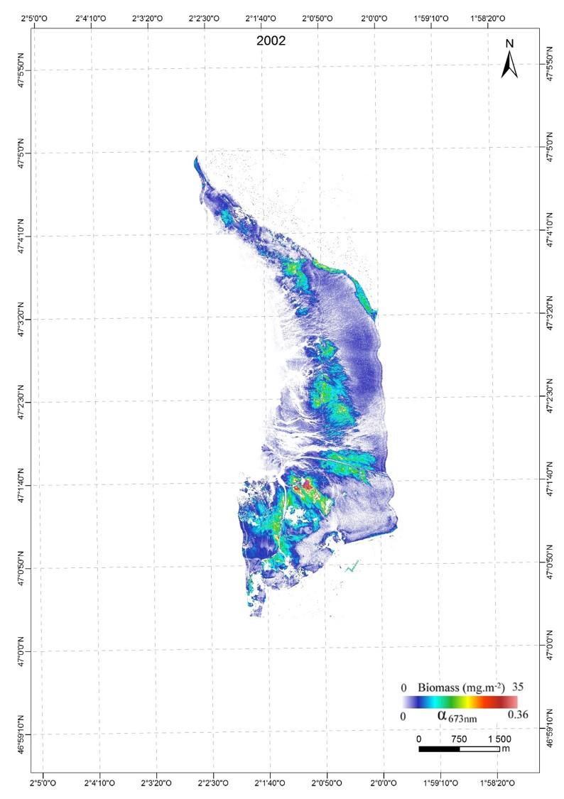 Cartographie du microphytobenthos en Baie de Bourgneuf 2002