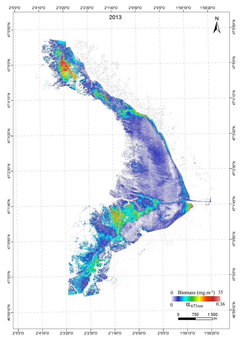 Cartographie du microphytobenthos en Baie de Bourgneuf 2013